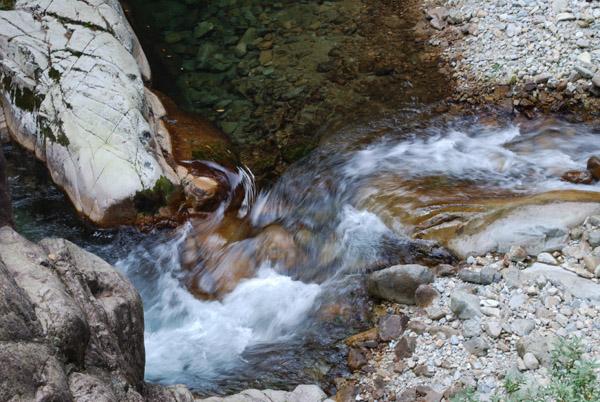 透明でキレイな水です