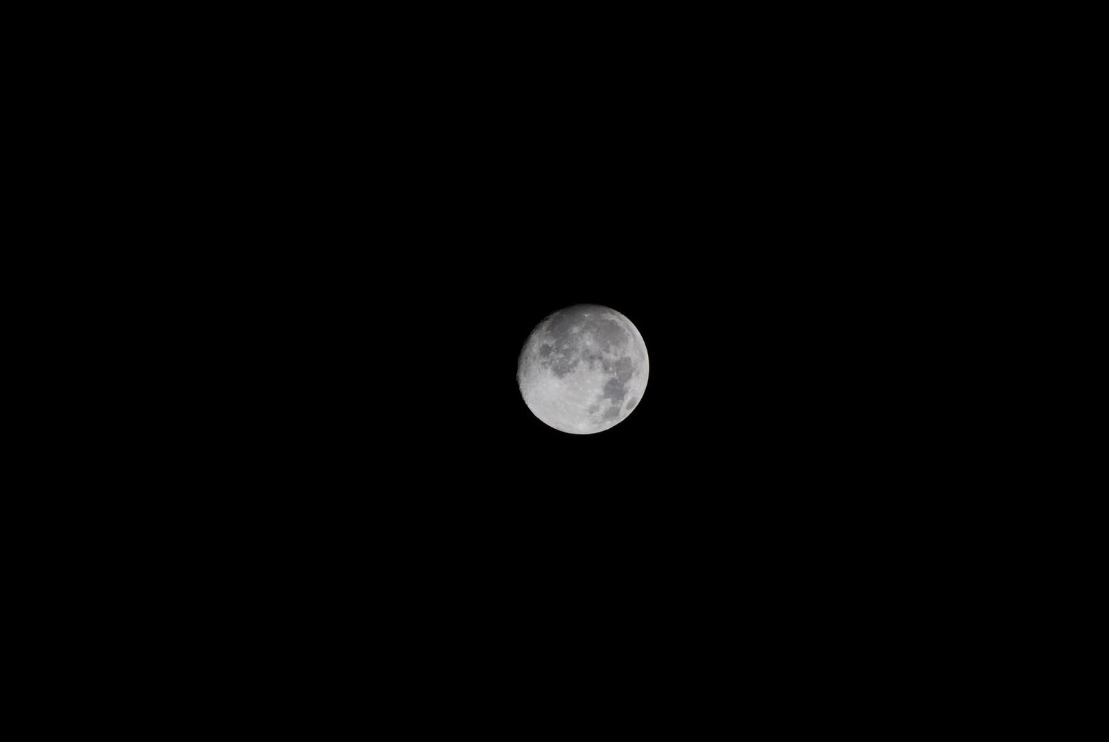満月ちょっと前のお月様です
