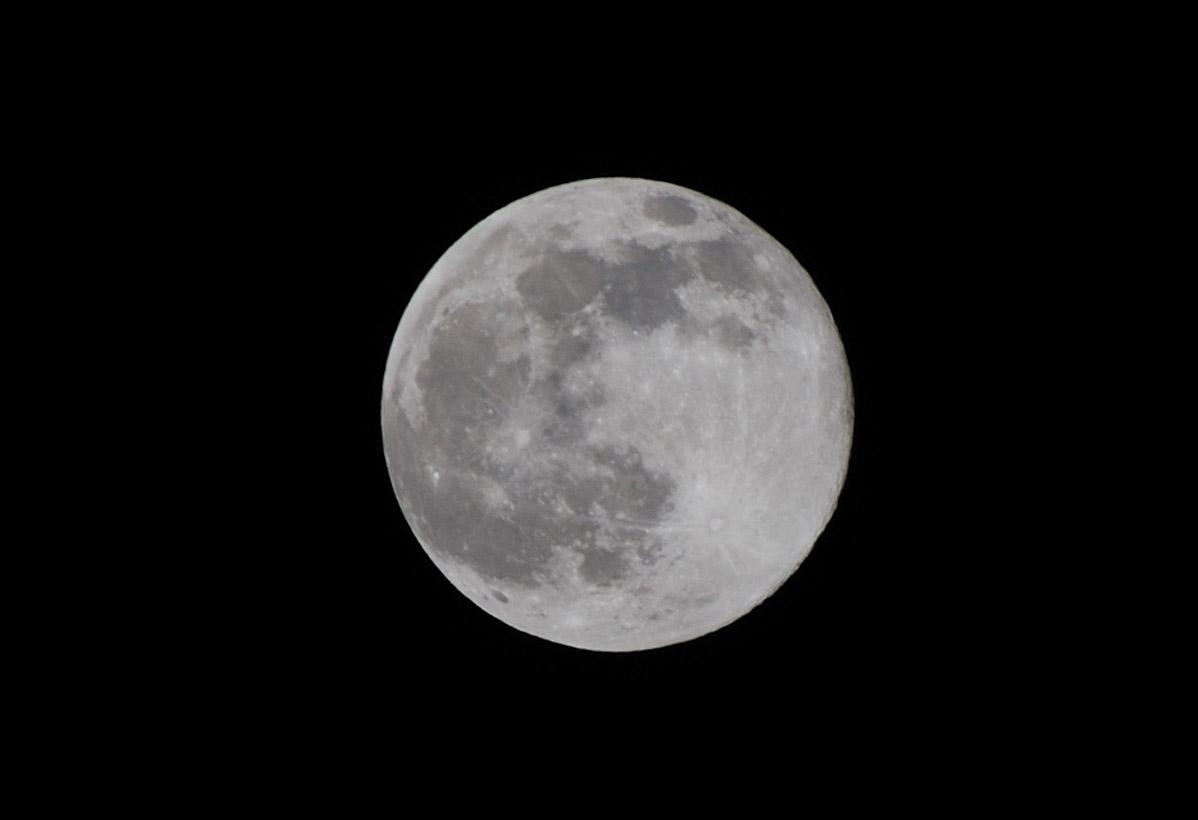 満月のお月様です