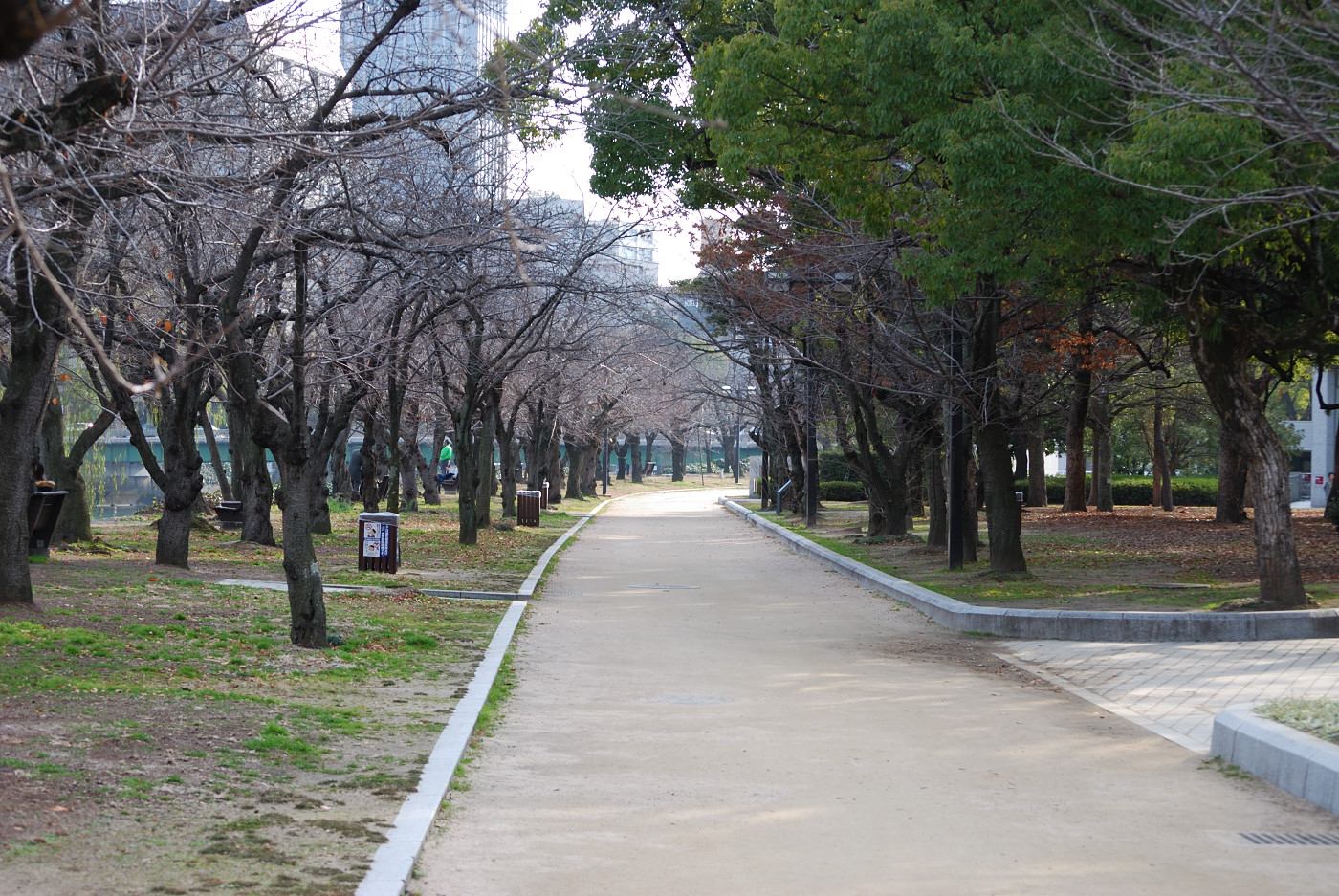 平和公園付近その1