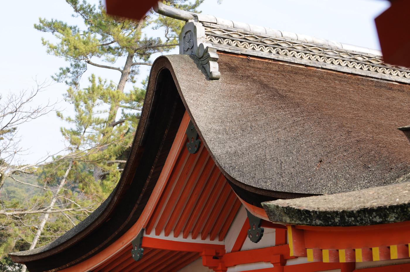 厳島神社の中から屋根を