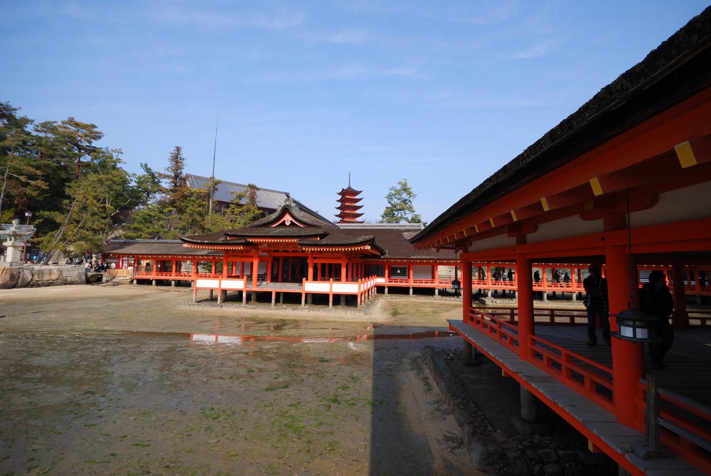 厳島神社の本殿から五重塔を10mm(15mm)で撮影