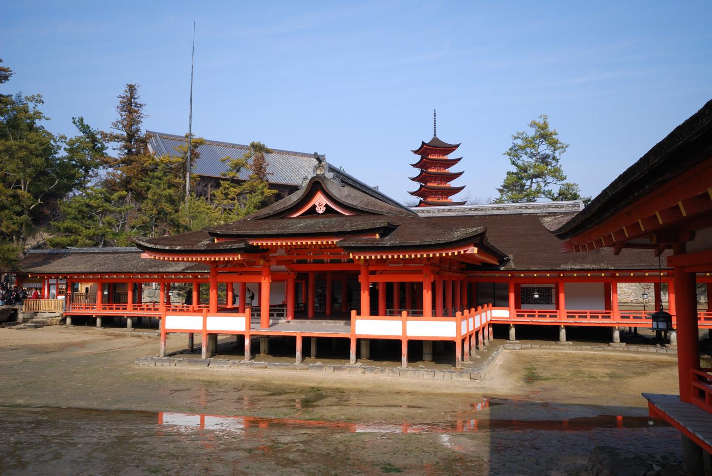 厳島神社の本殿から五重塔を20mm(30mm)で撮影