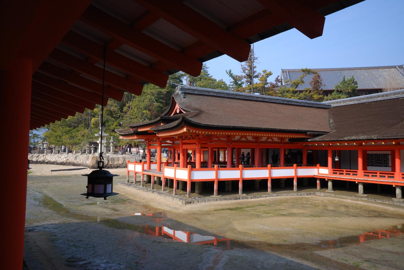 厳島神社の本殿から広角で撮影です