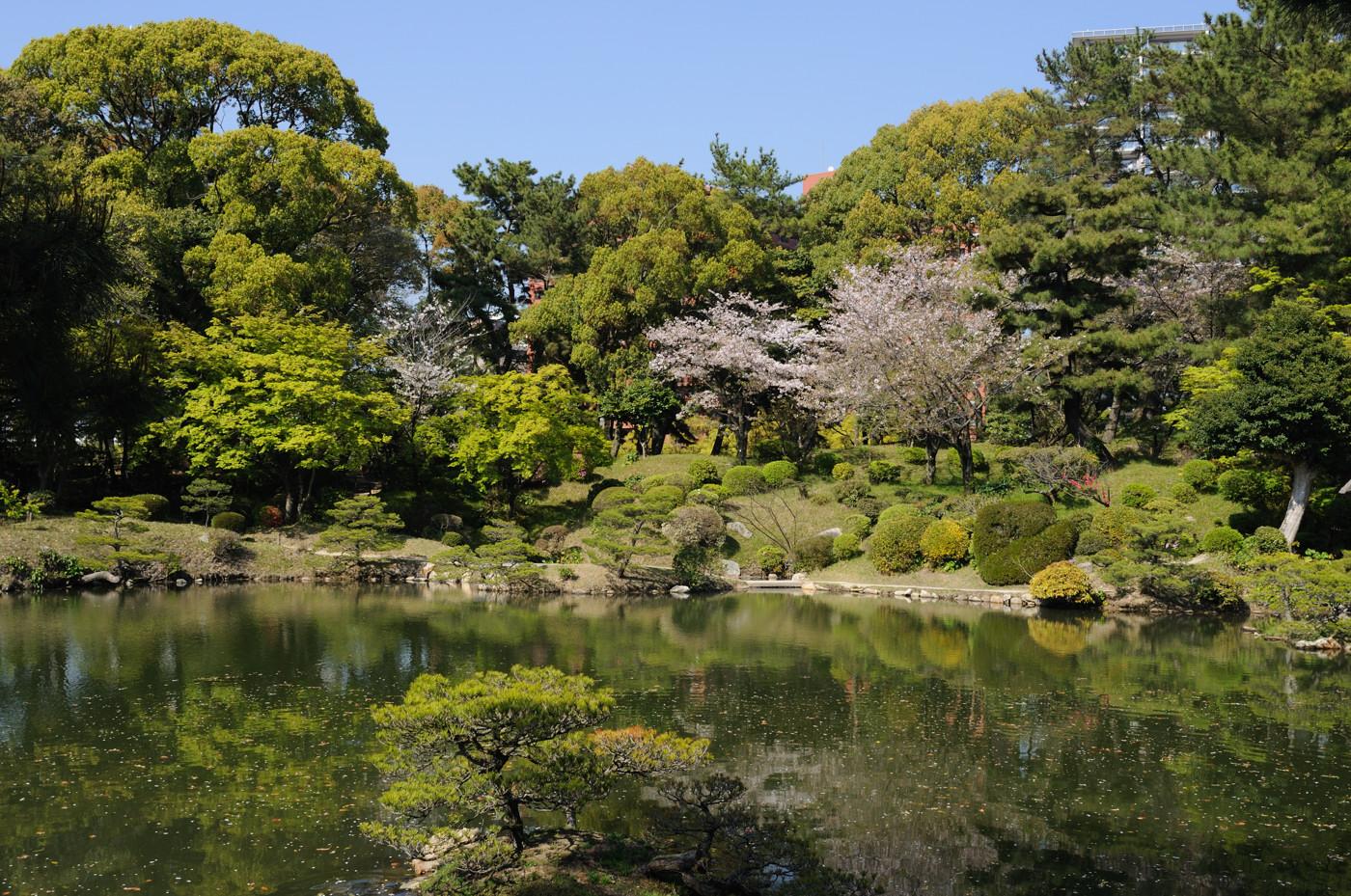春の縮景園の風景その3