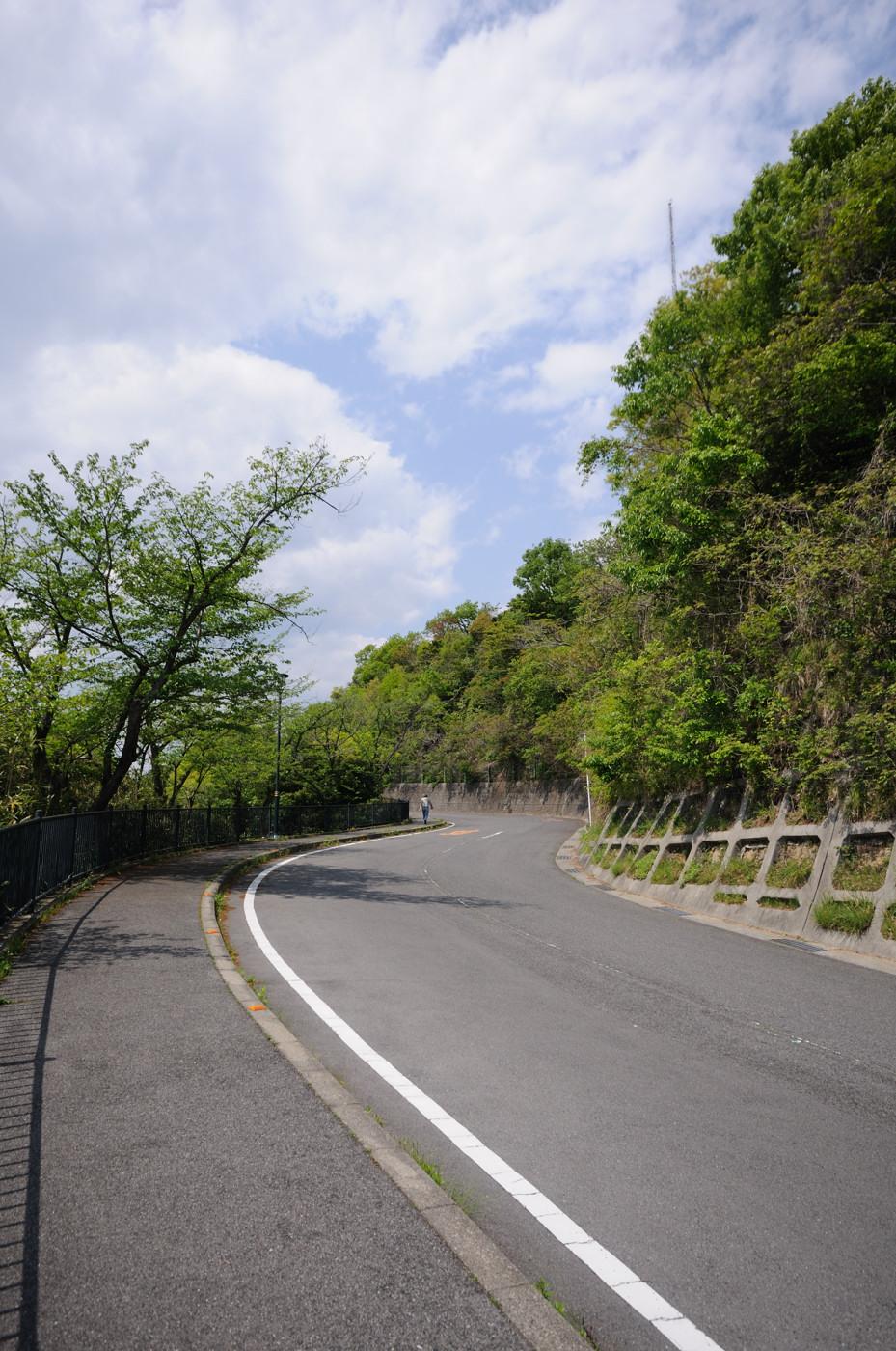 黄金山を登る道