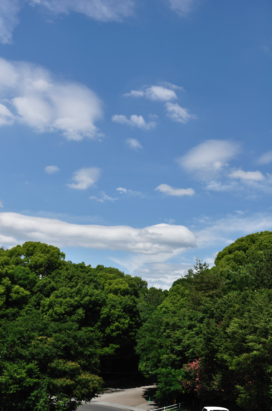 エンタープライズに見えなくも無い雲
