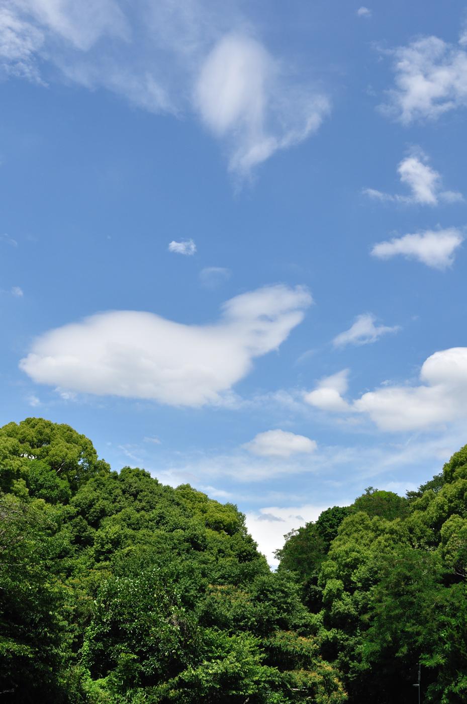 緑と雲その3