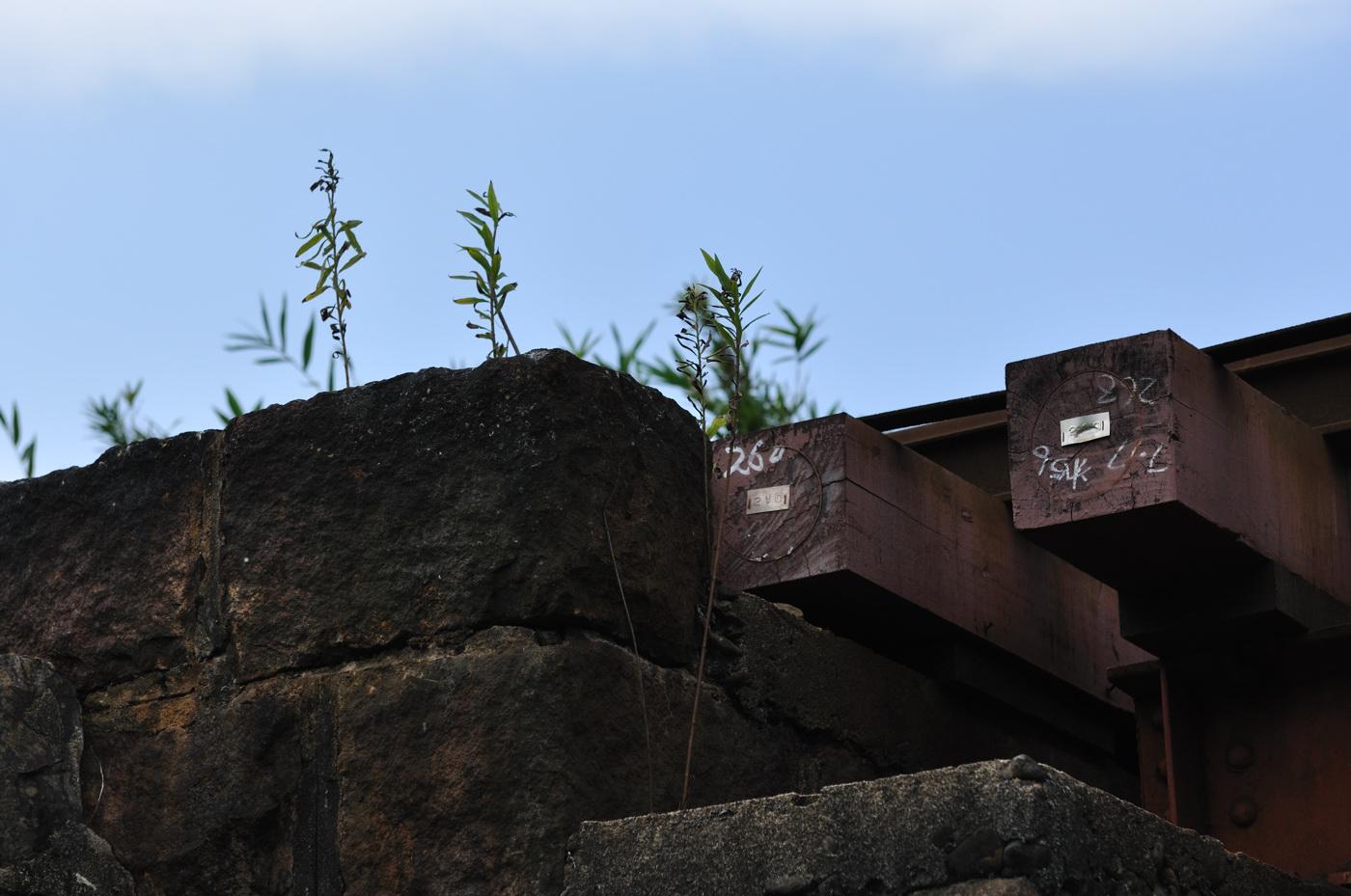 芸備線の高架