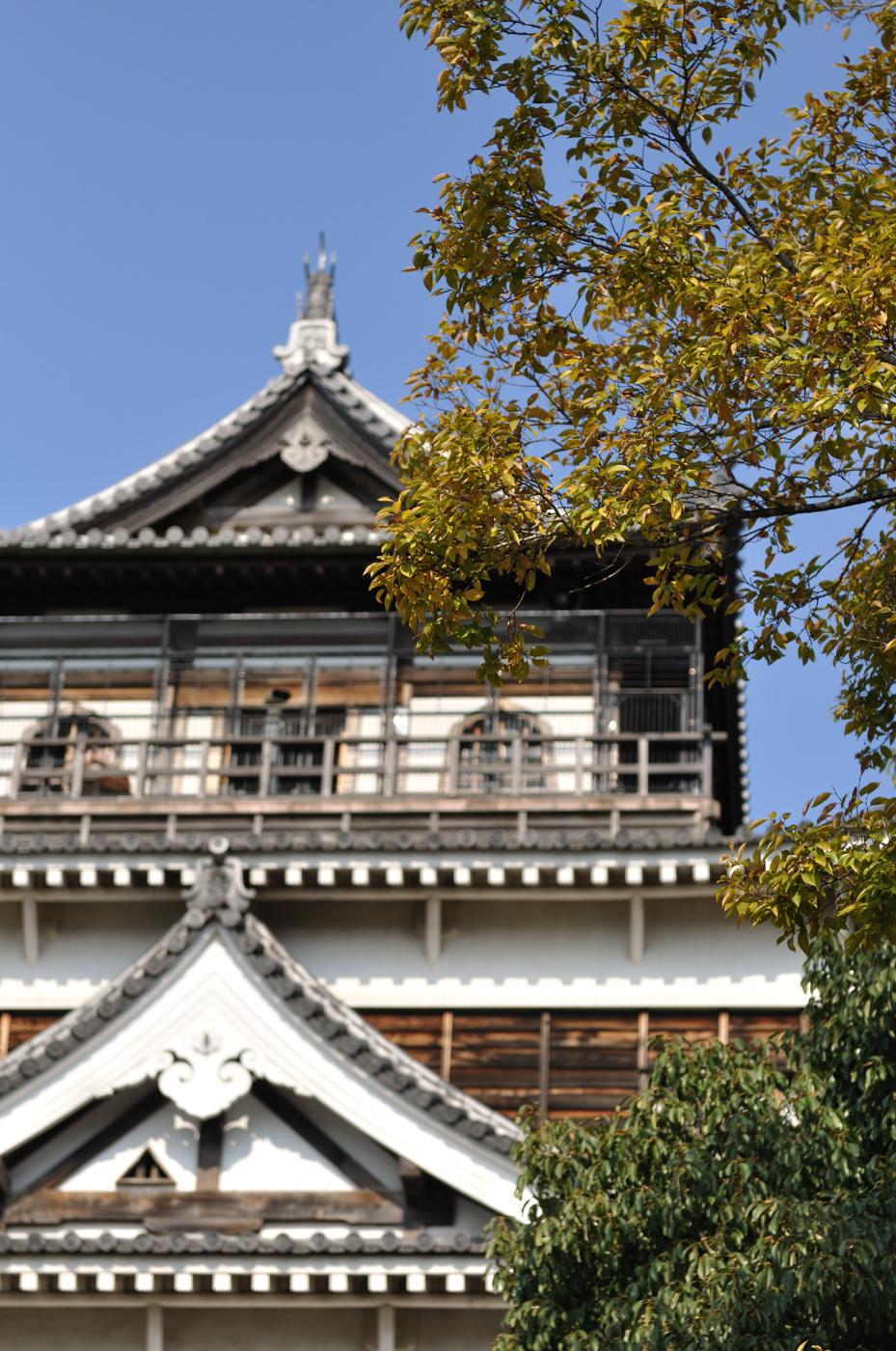 ボケと広島城の天守閣