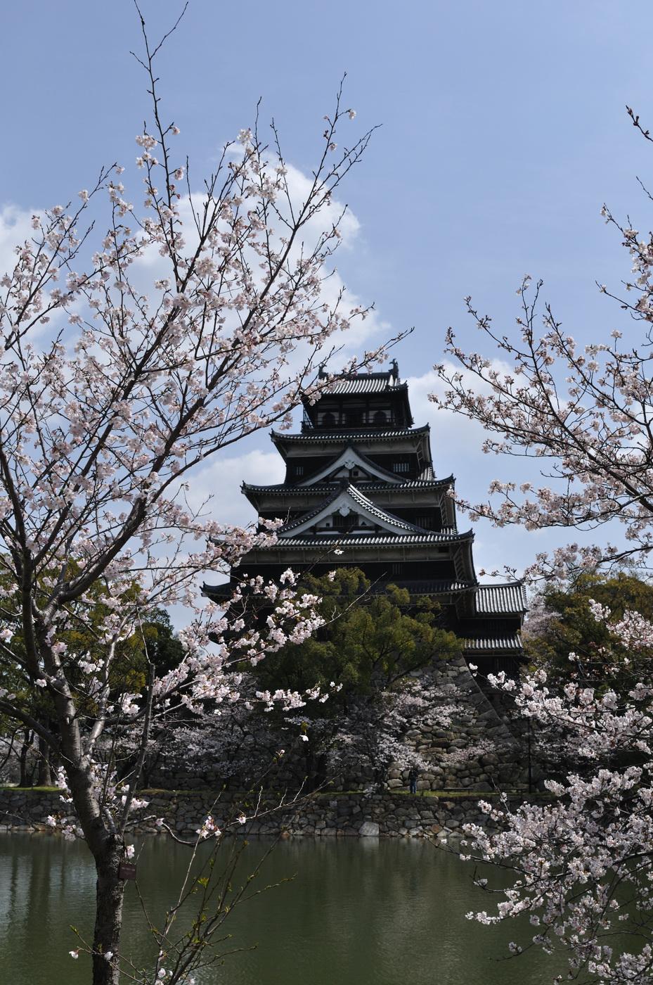 桜と広島城その1