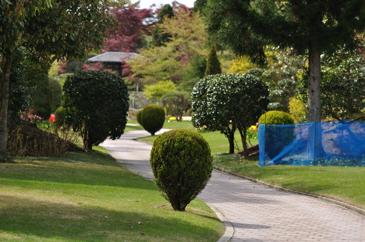 庭園の道を望遠で