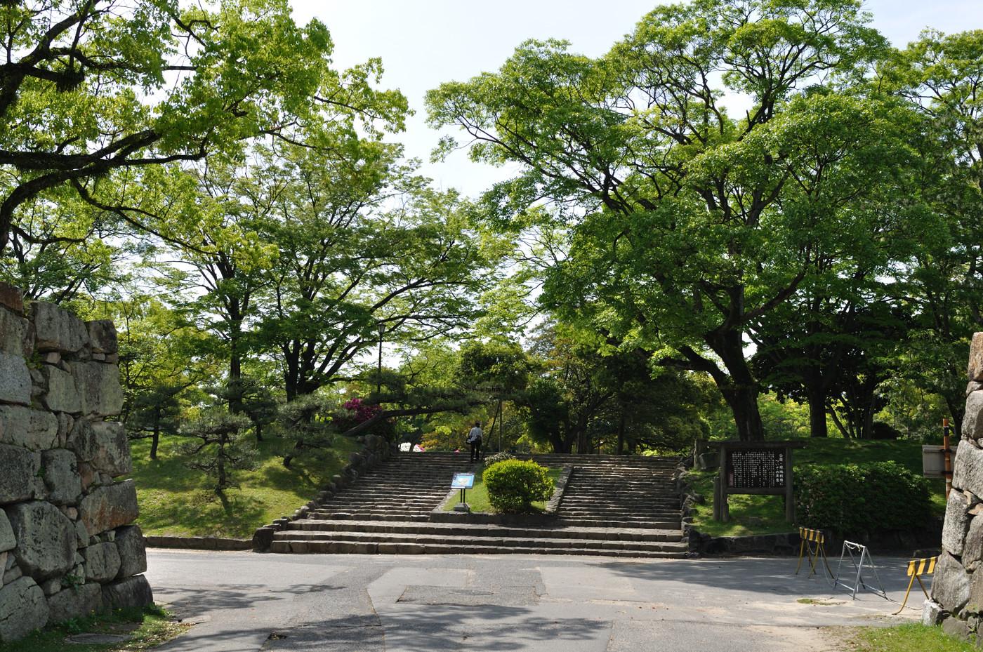 広島城で新緑