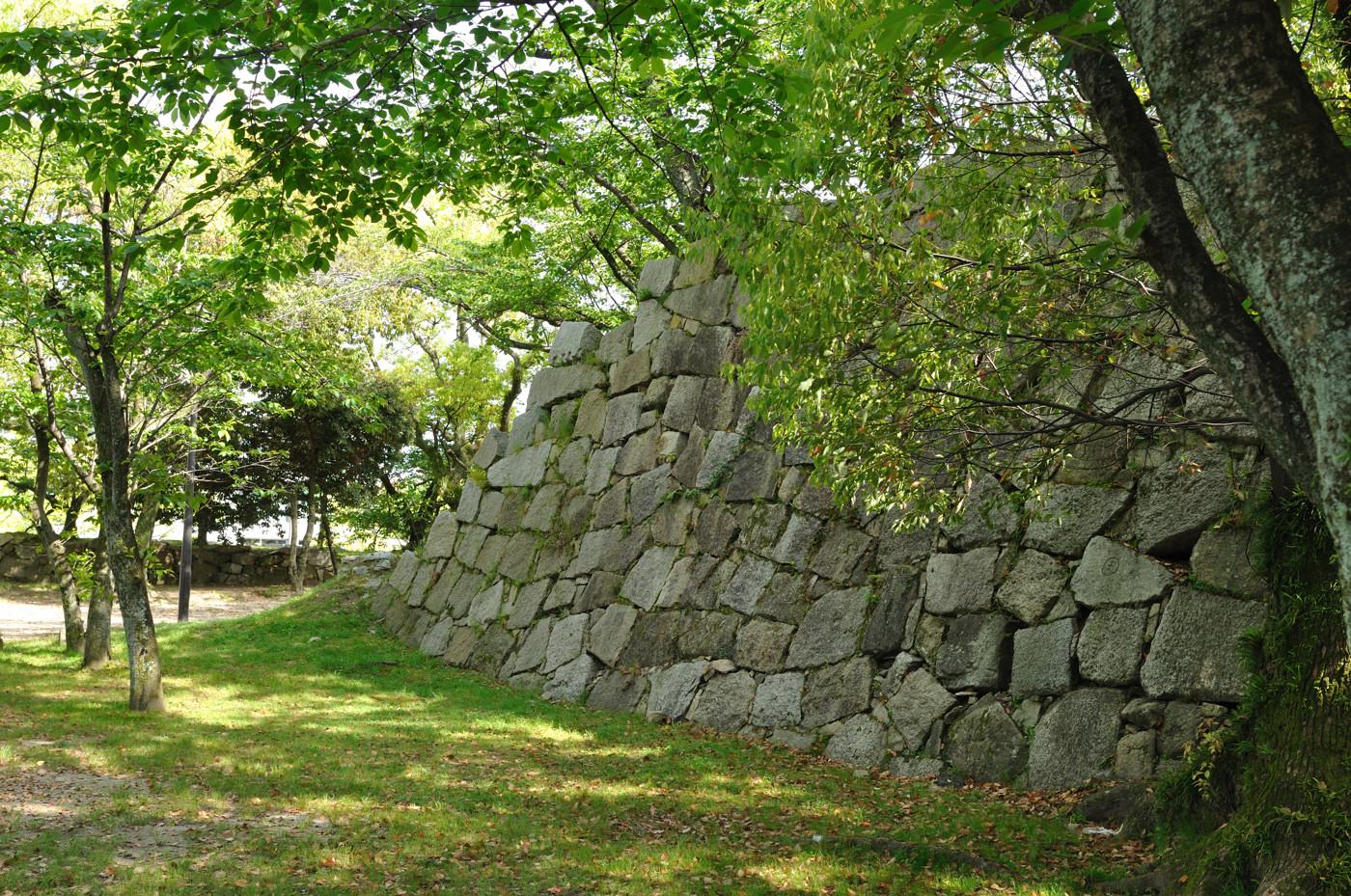 新緑と石垣その1