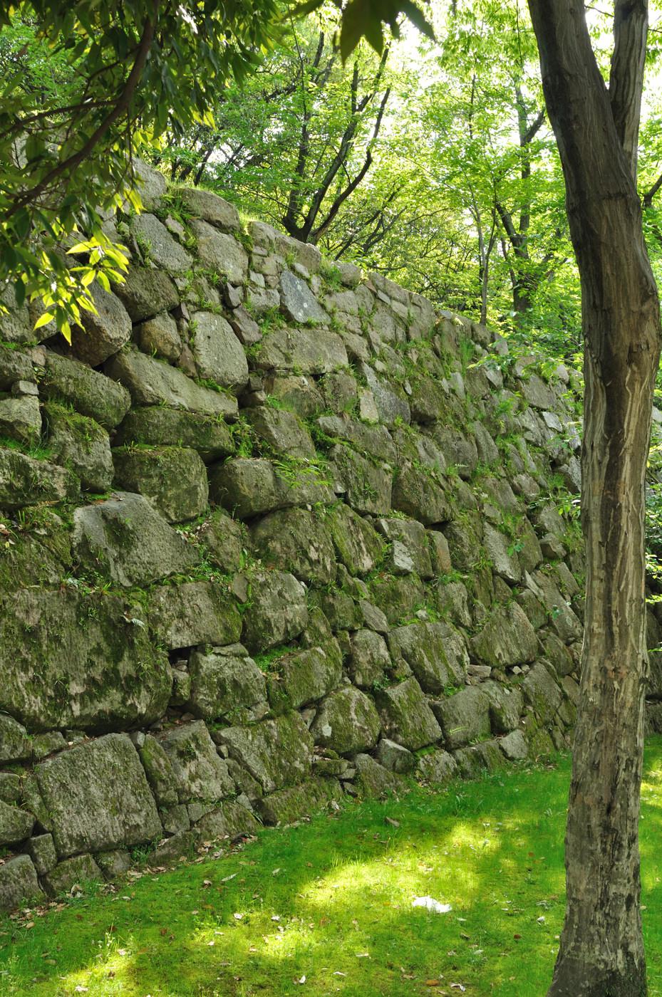 新緑と石垣その2