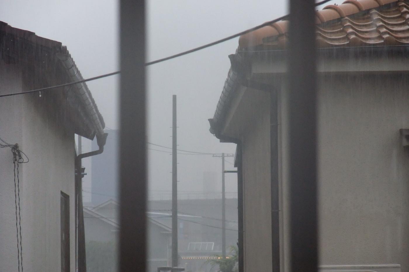 先週の土日の大雨
