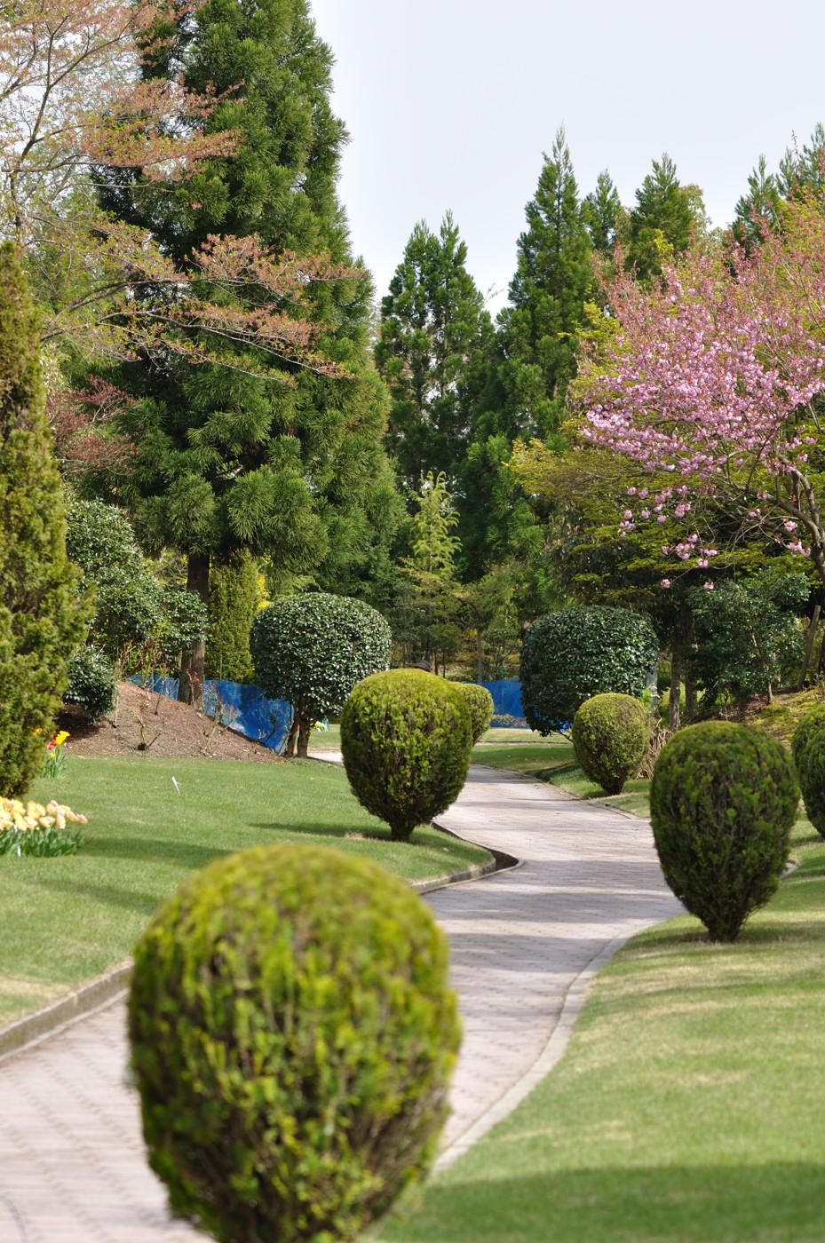 久しぶりに湧永庭園の写真