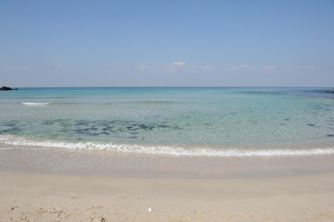 角島の海じゃなイカ?その2でゲソ