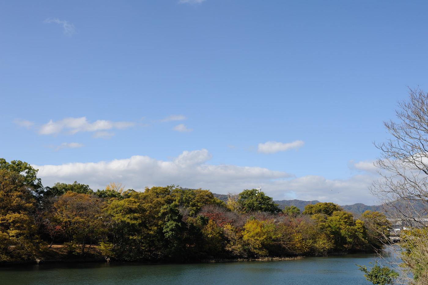 広島ビッグウェーブ付近その4でゲソ
