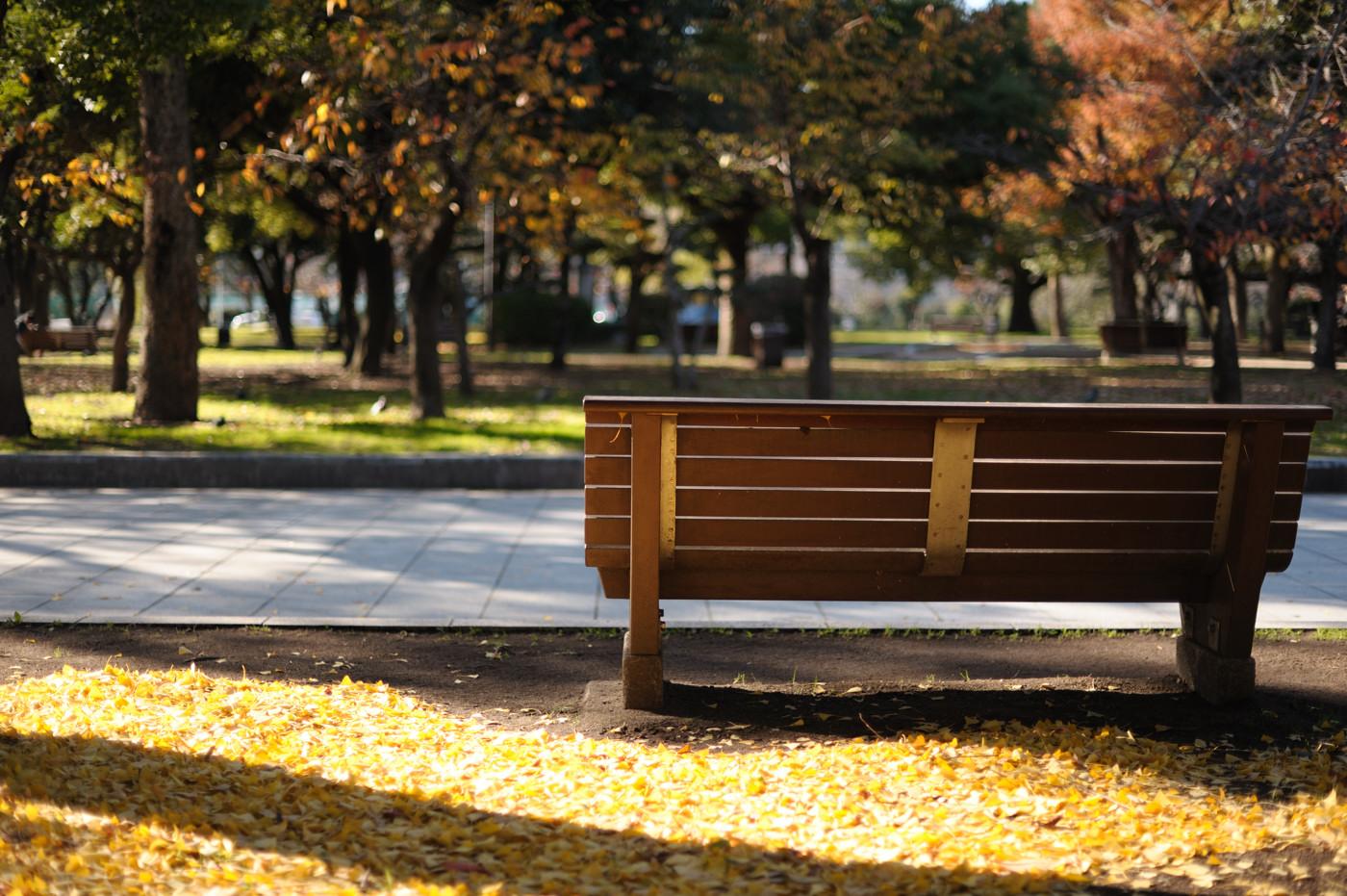 平和公園のベンチでゲソ