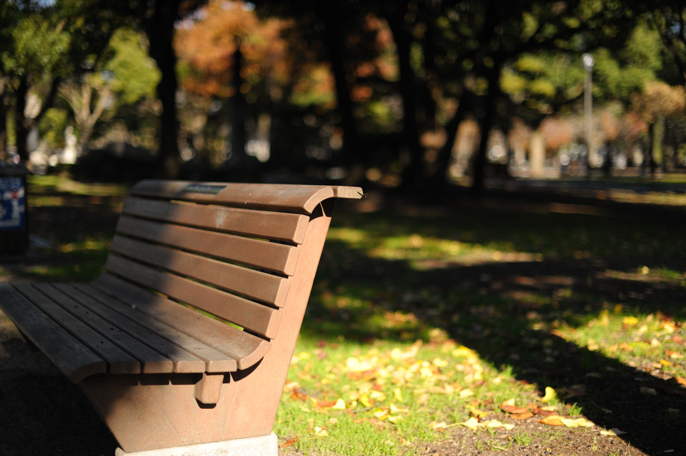 これも平和公園のベンチでゲソ