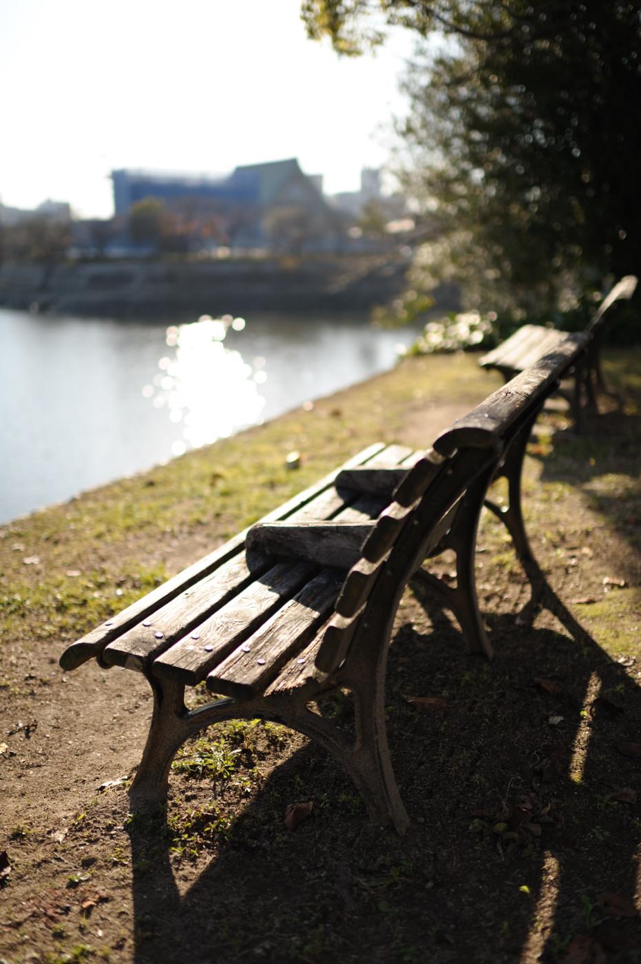これも川岸のベンチでゲソ