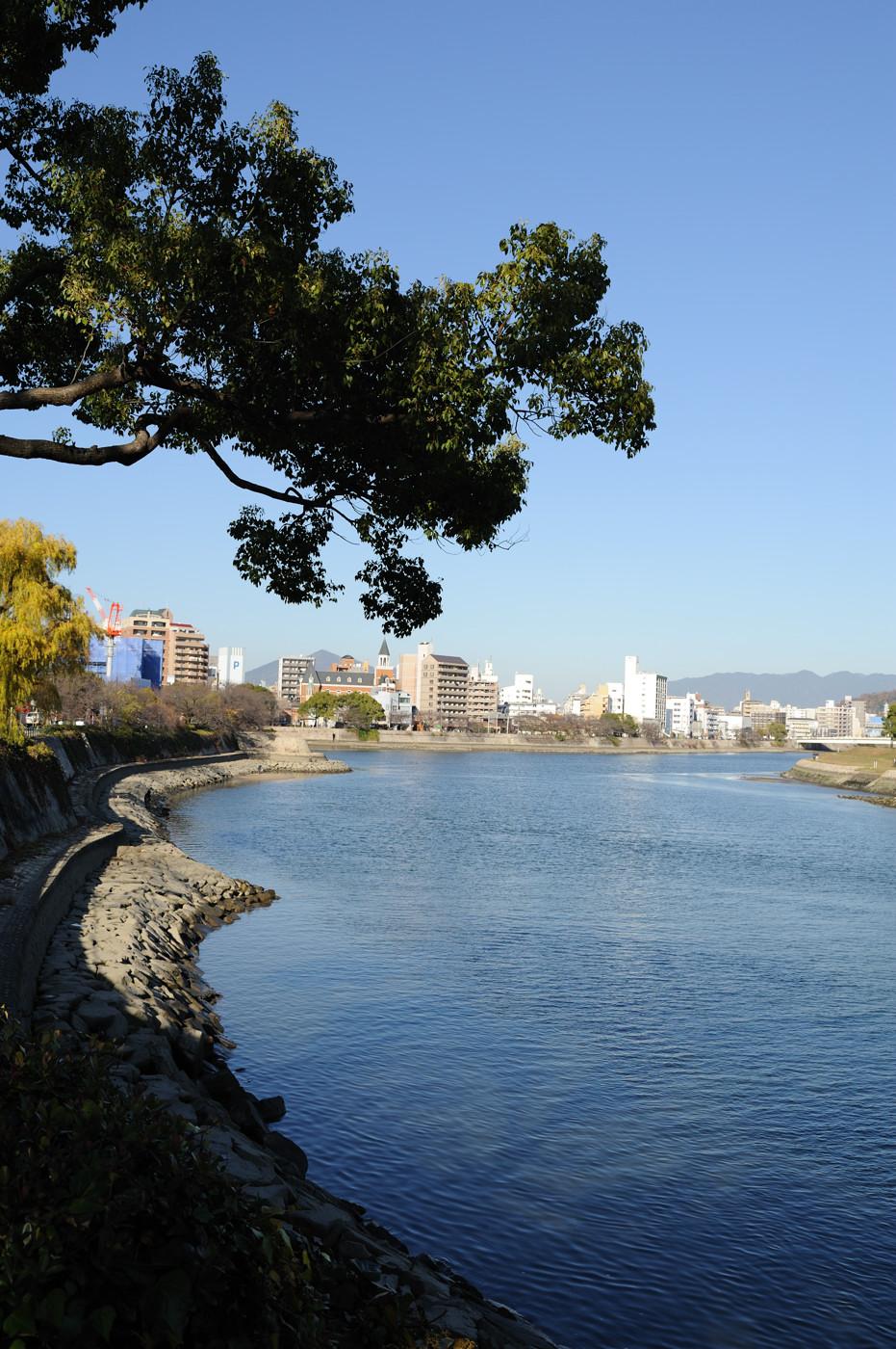 市内の川その2でゲソ