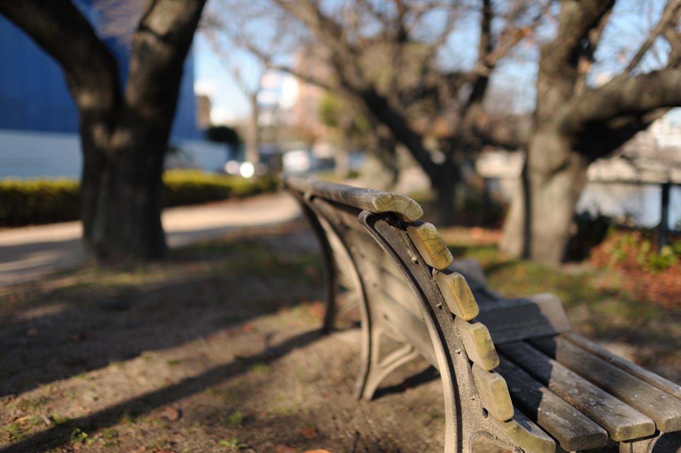 さらにベンチでゲソ