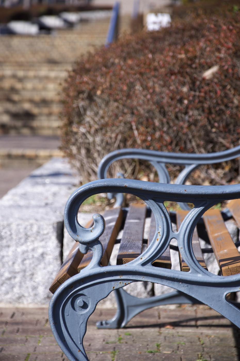 近くのベンチでゲソ