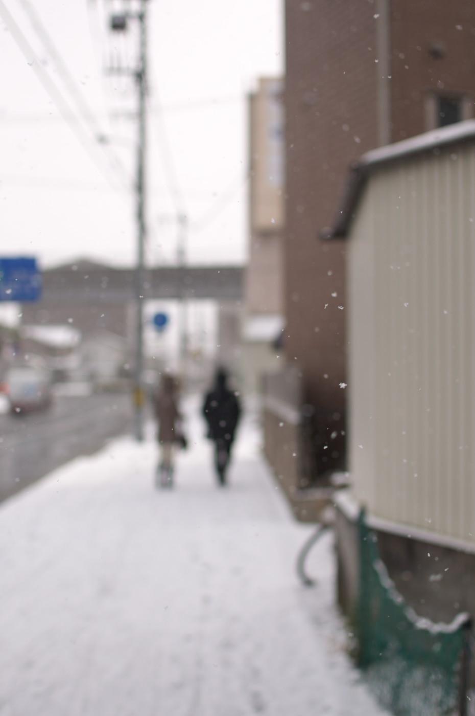 なんとか雪が写っているでゲソ