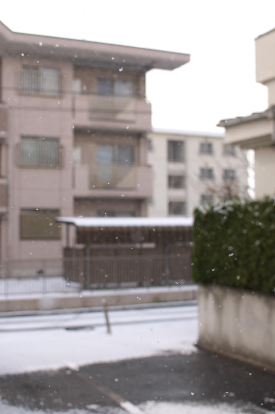 これもなんとか雪が写っているでゲソ