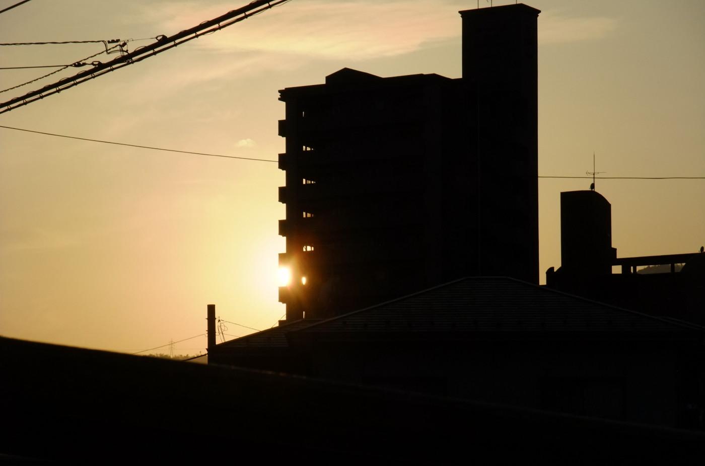 ビルからはみ出した太陽でゲソ