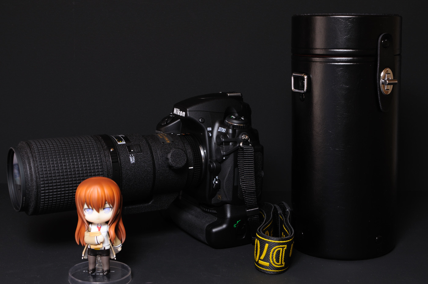 Ai AF Micro-Nikkor 200mm f/4D IF-EDでゲソ