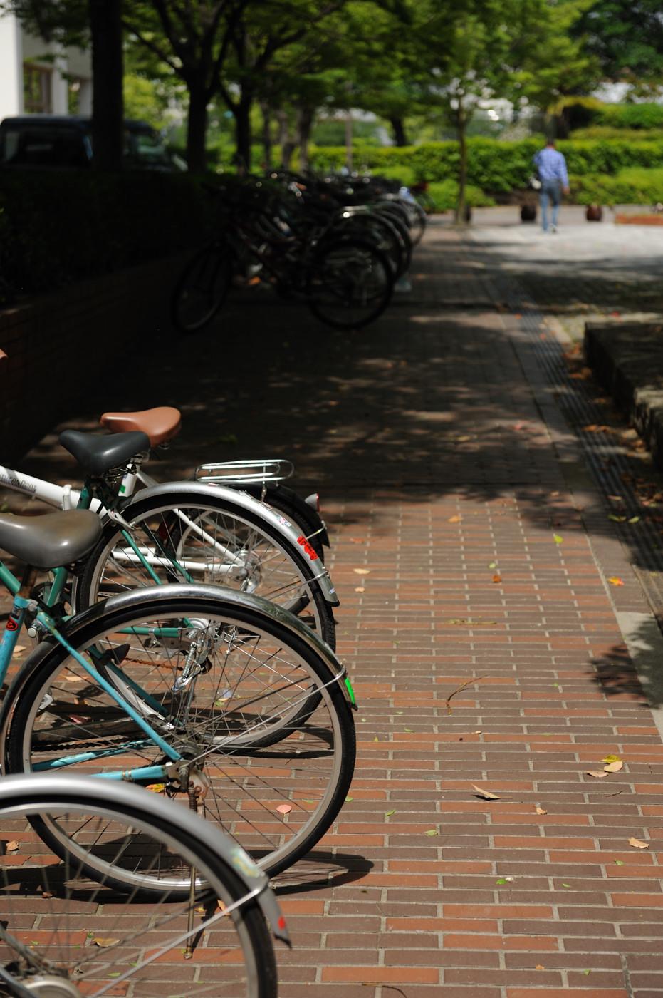 自転車でゲソ