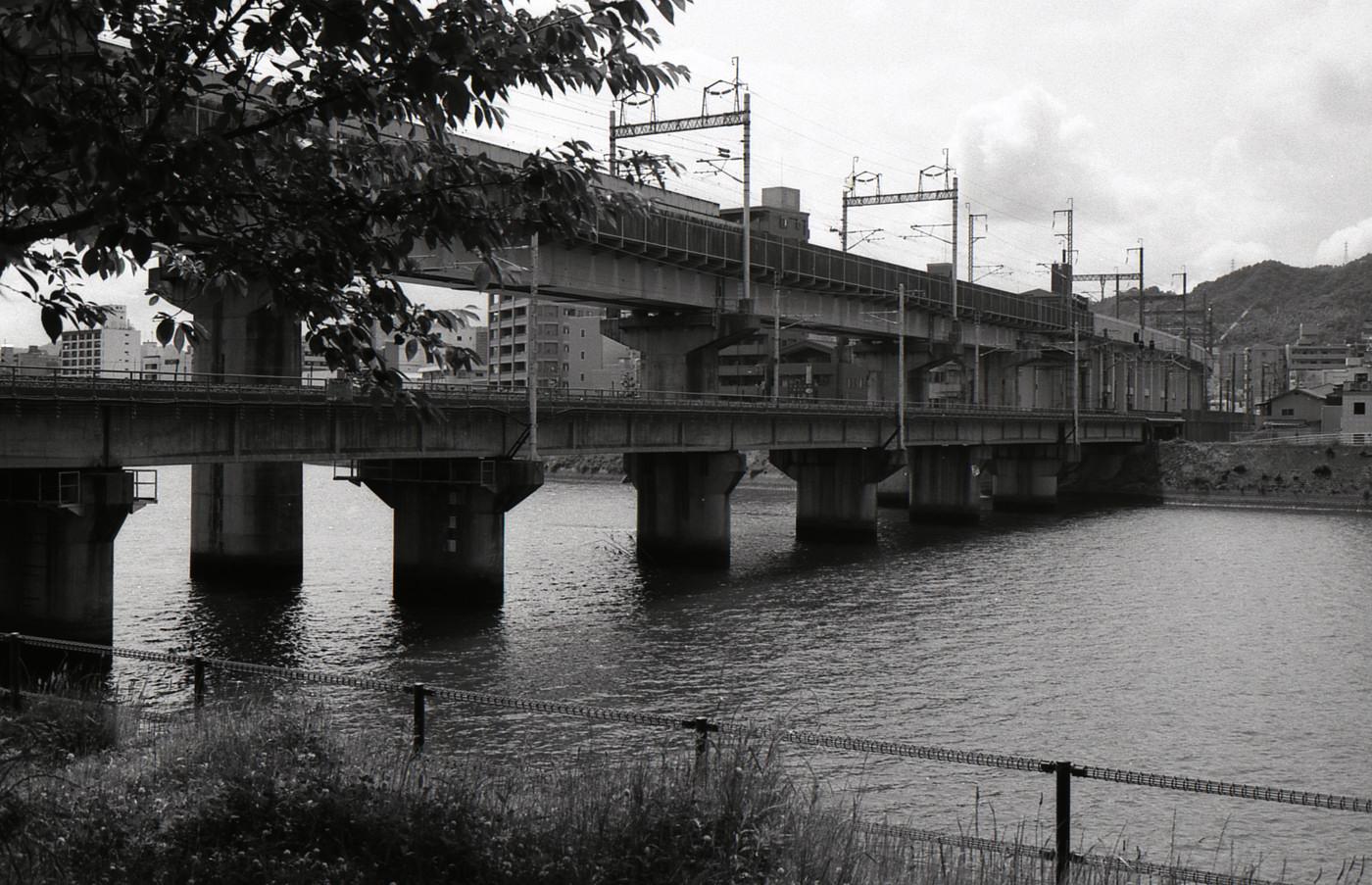 鉄橋でゲソ