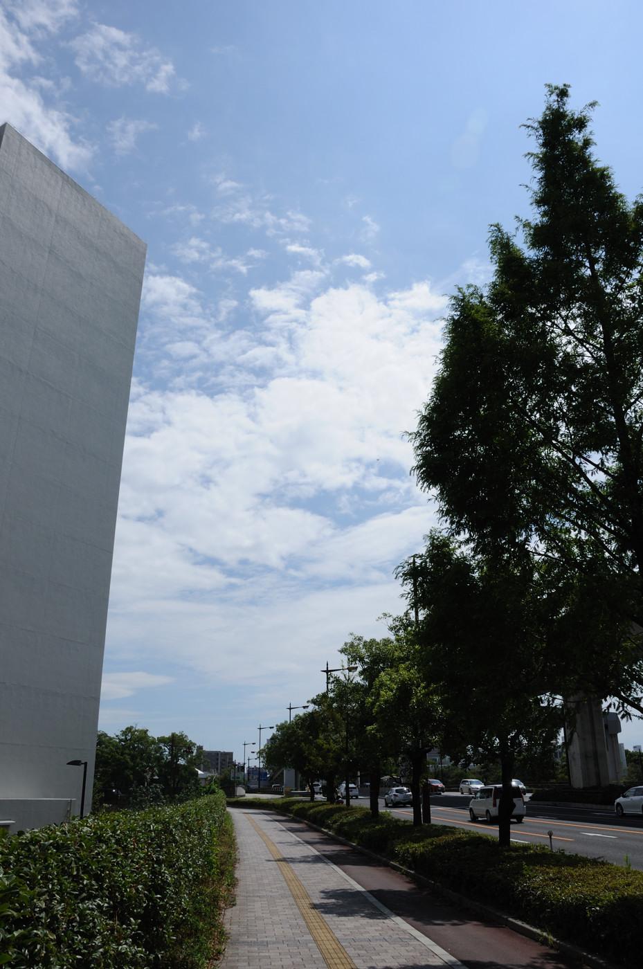 青い空に白い雲でゲソ