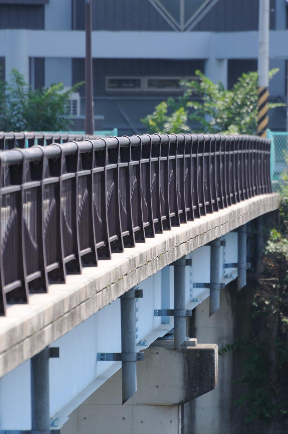 望遠で橋でゲソ
