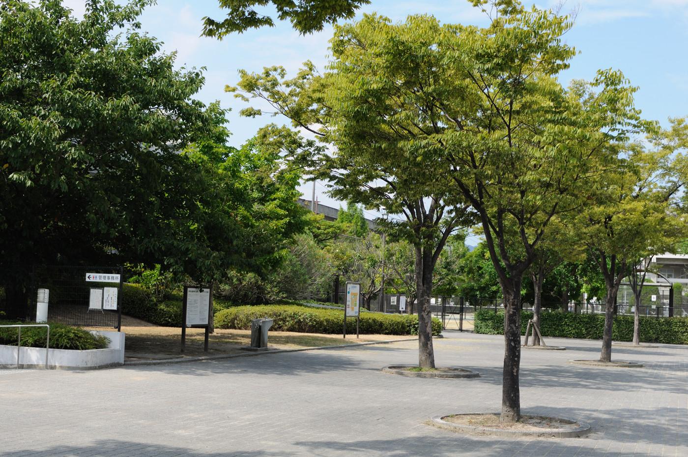 公園でゲソ