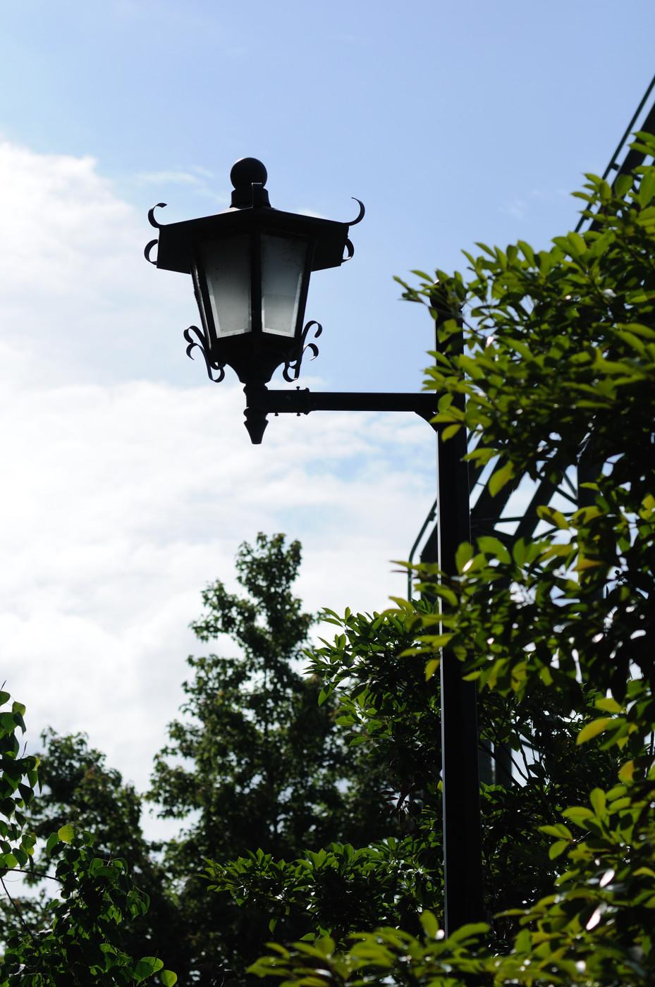 街灯でゲソ