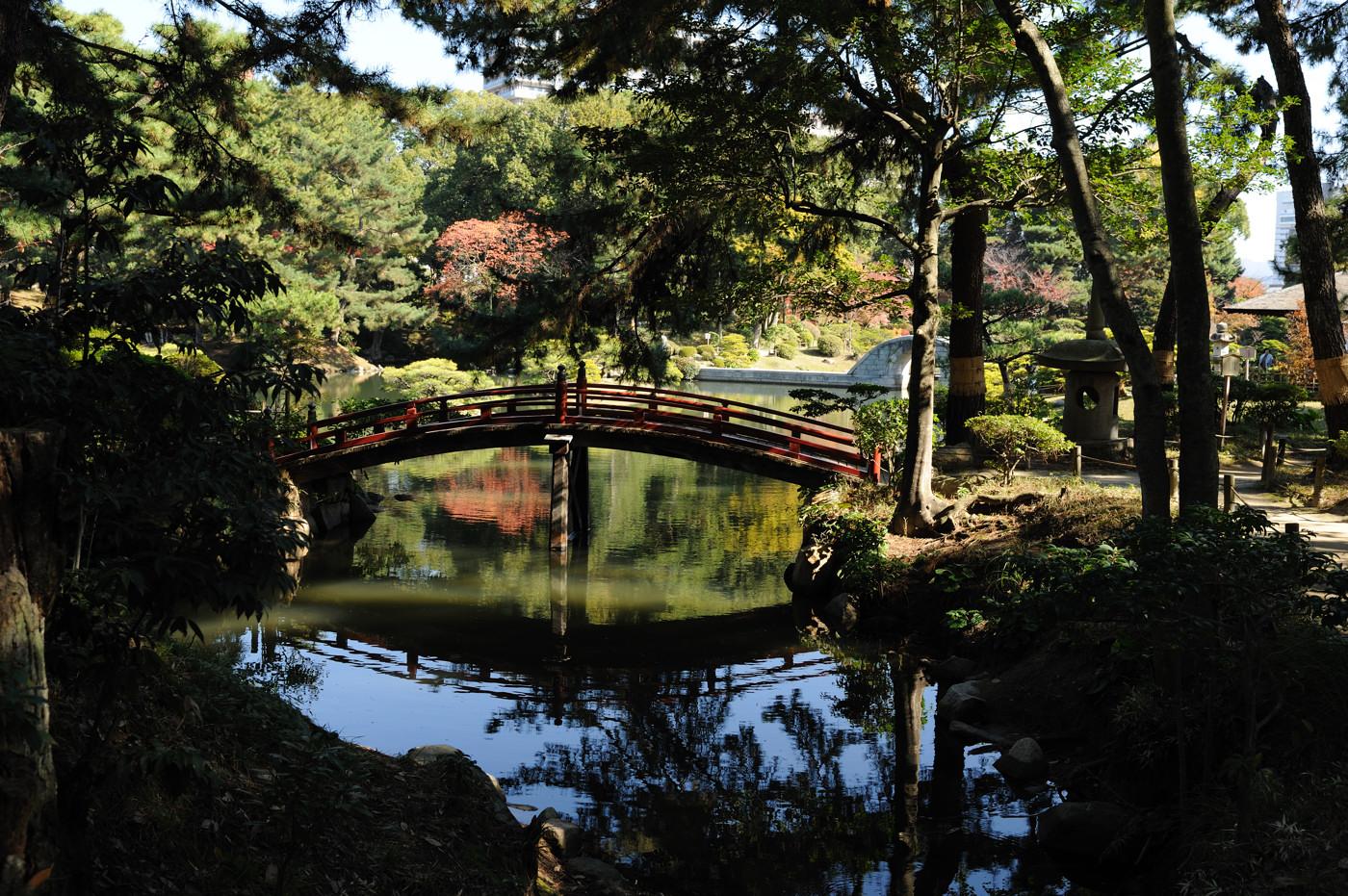 縮景園の橋でゲソ