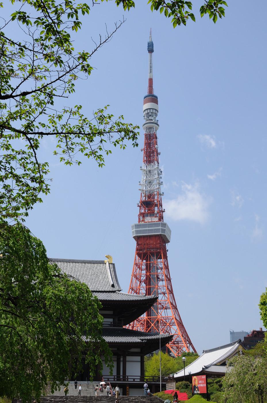 東京タワーでゲソ